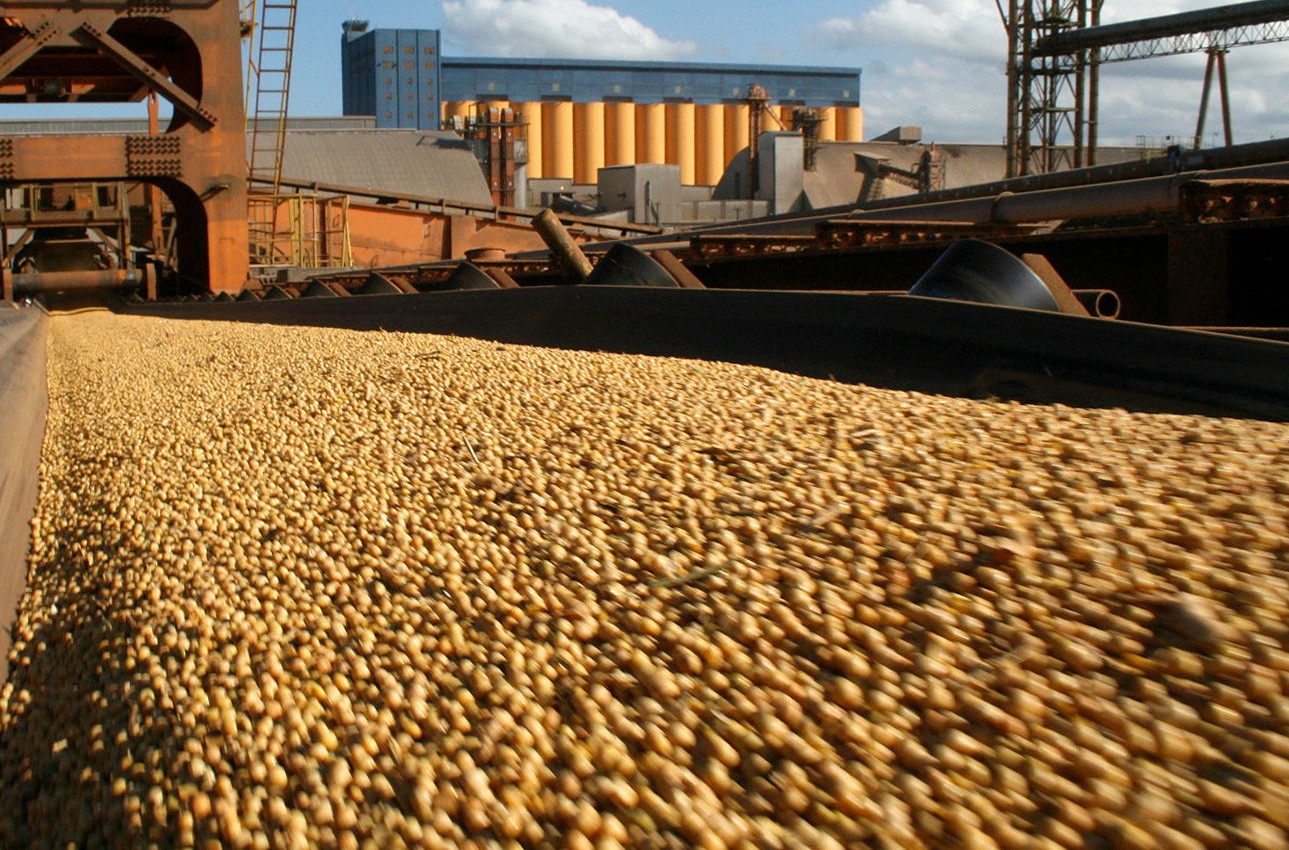 implications of the soybean industry and Effects on the competitiveness of the brazilian soyb ean industry conclusions and implications for the future of the brazilian soybean industry are offered at the end.